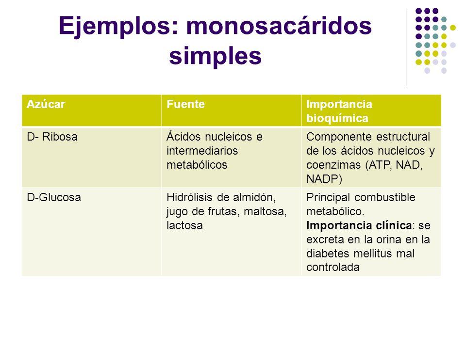 Ejemplos: monosacáridos simples