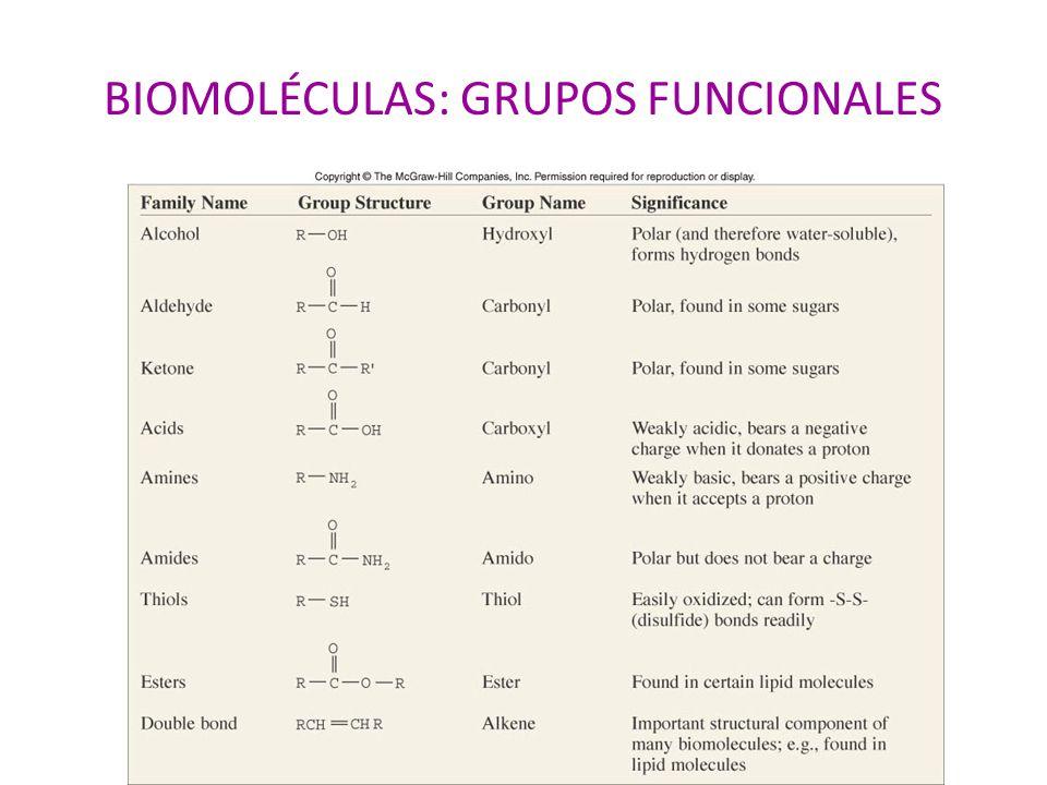 BIOMOLÉCULAS: GRUPOS FUNCIONALES