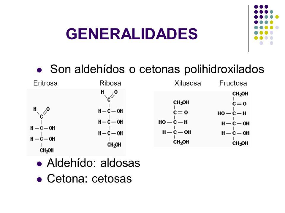 GENERALIDADES Son aldehídos o cetonas polihidroxilados