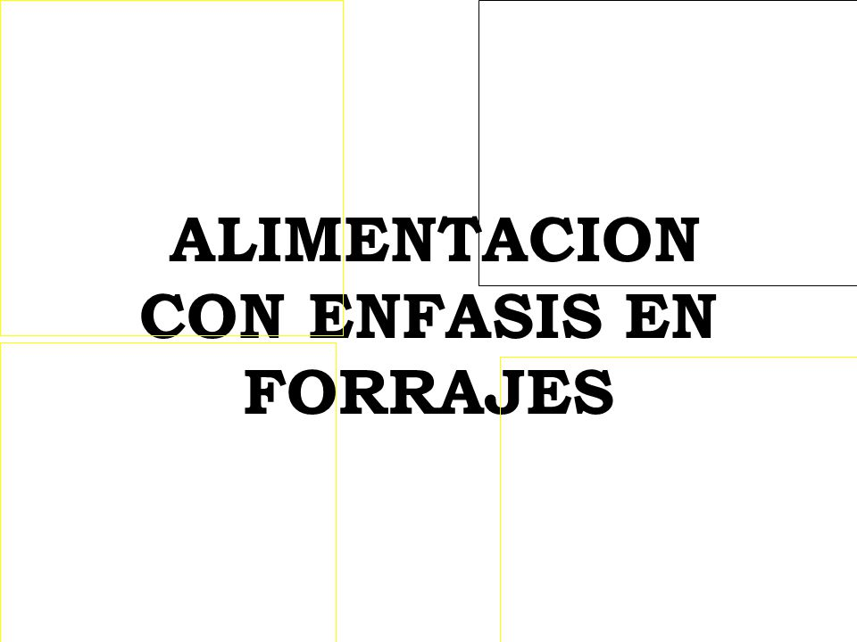 ALIMENTACION CON ENFASIS EN FORRAJES