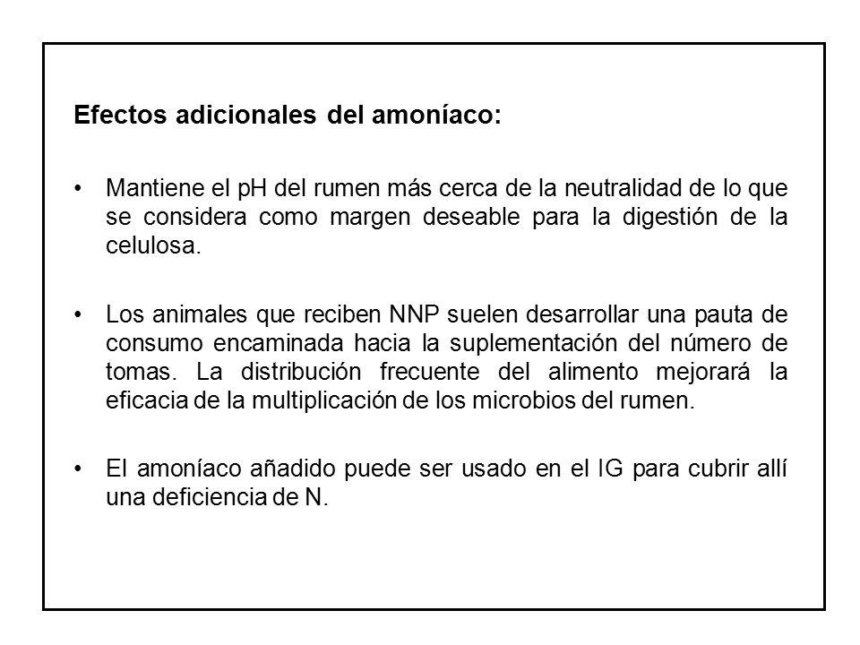 Efectos adicionales del amoníaco: