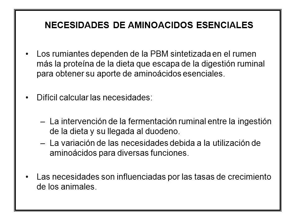 NECESIDADES DE AMINOACIDOS ESENCIALES