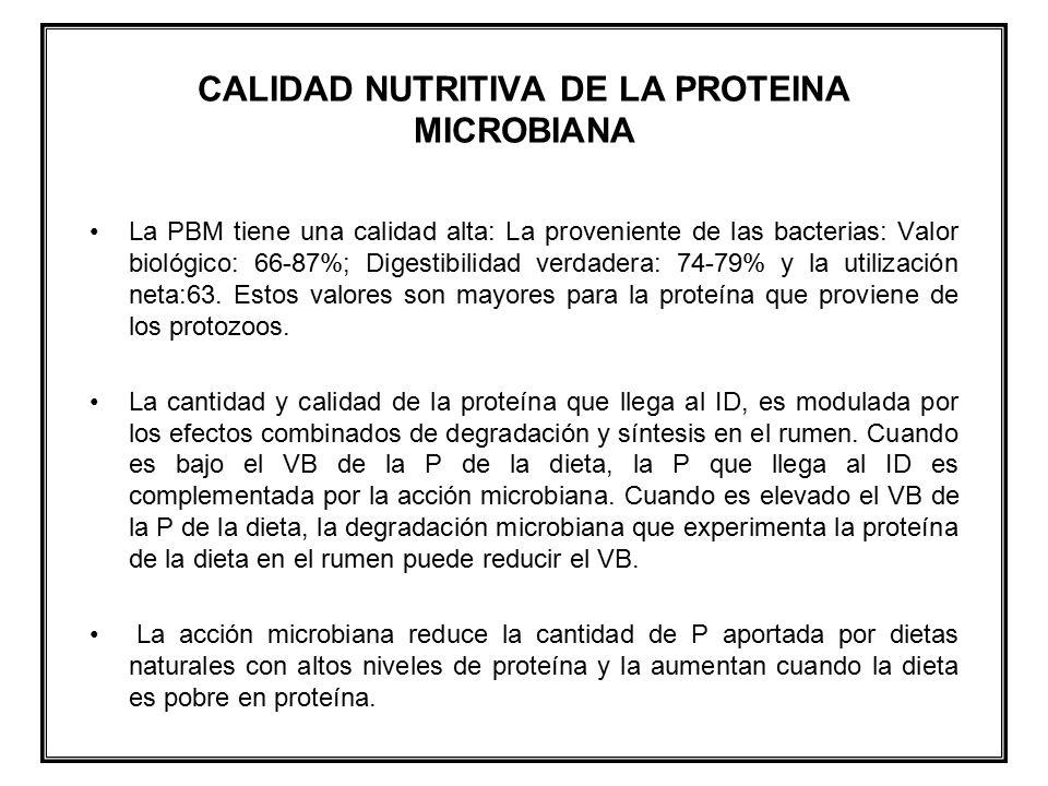 CALIDAD NUTRITIVA DE LA PROTEINA MICROBIANA