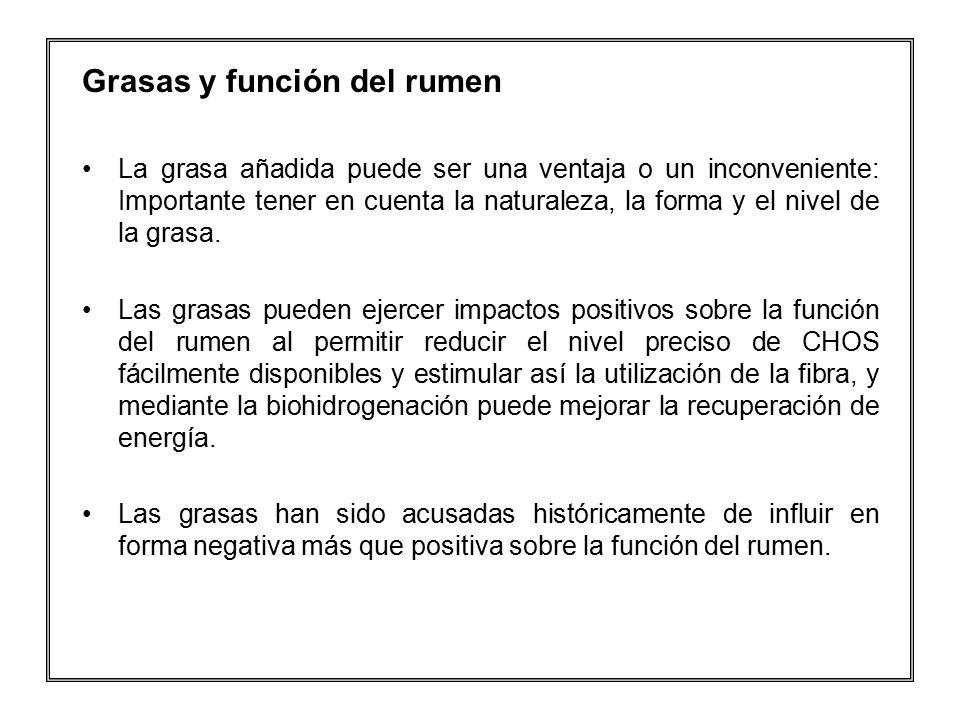 Grasas y función del rumen