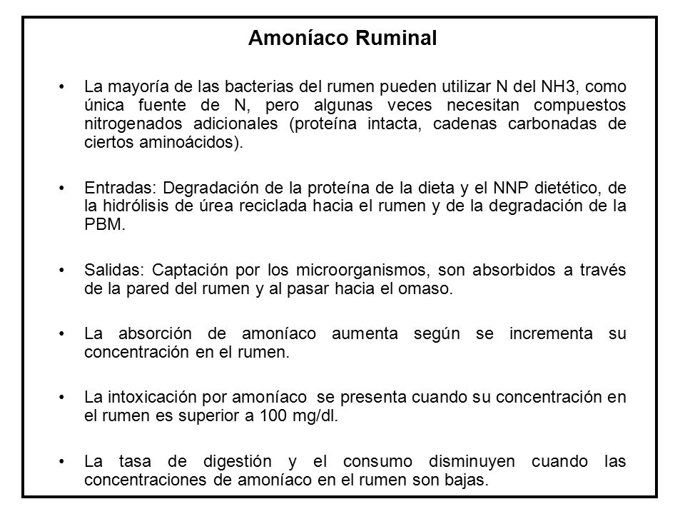 Amoníaco Ruminal