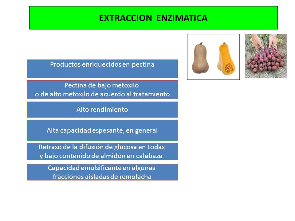 EXTRACCION ENZIMATICA