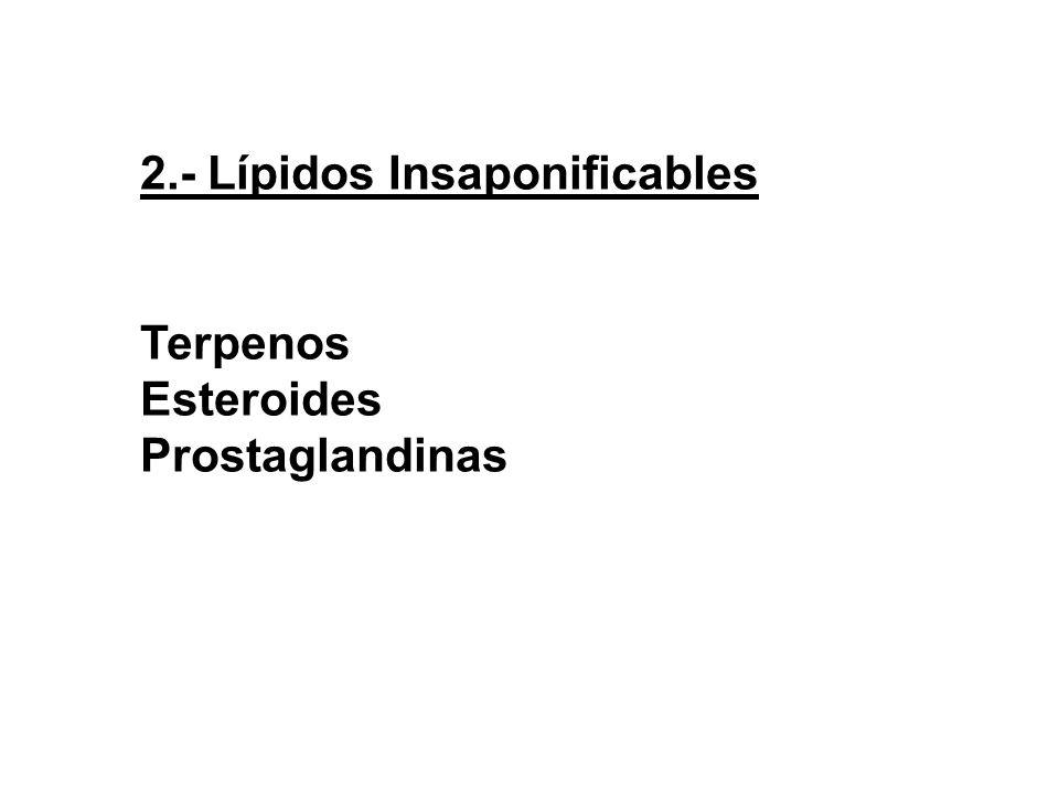 2.- Lípidos Insaponificables