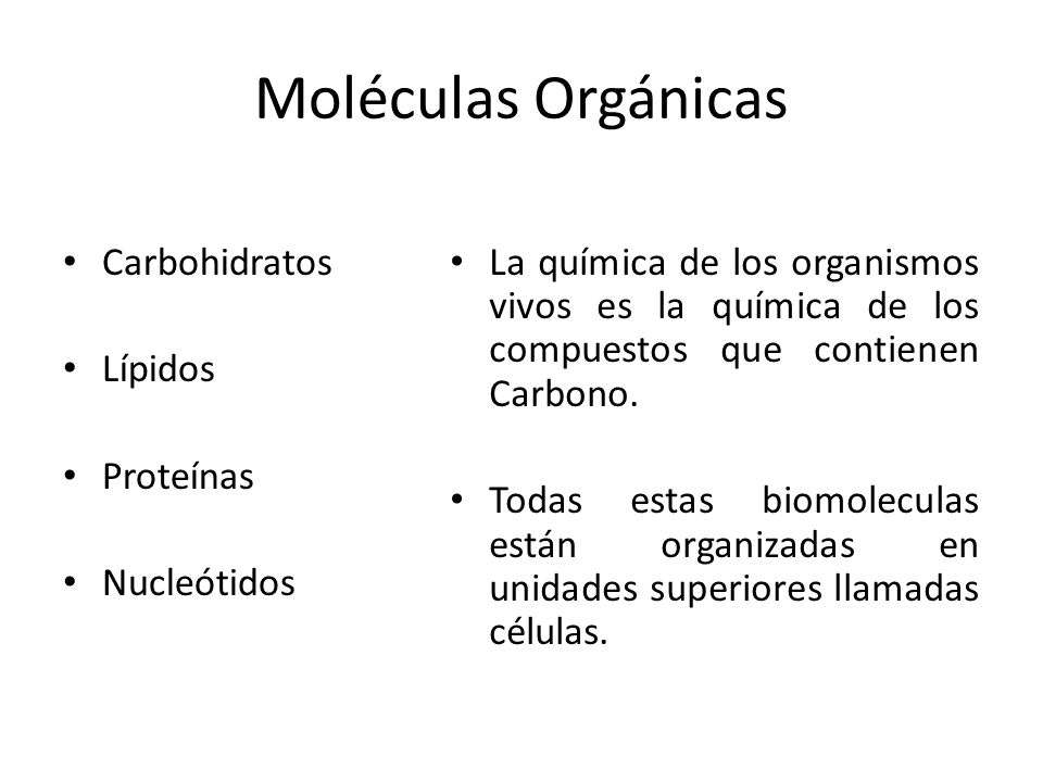 Moléculas Orgánicas Carbohidratos Lípidos Proteínas Nucleótidos