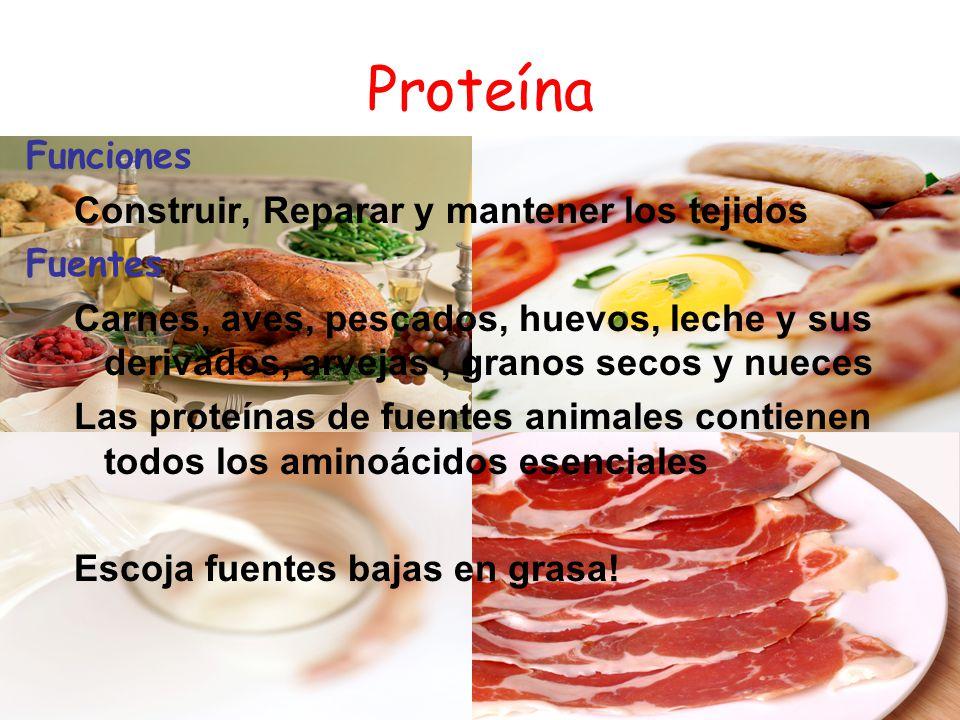 Proteína Funciones Construir, Reparar y mantener los tejidos Fuentes