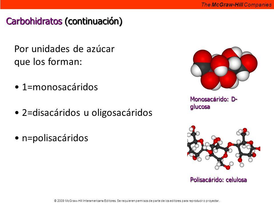 • 2=disacáridos u oligosacáridos • n=polisacáridos
