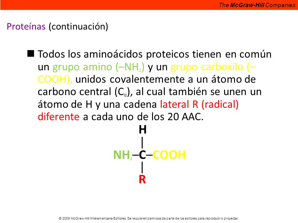 Proteínas (continuación)