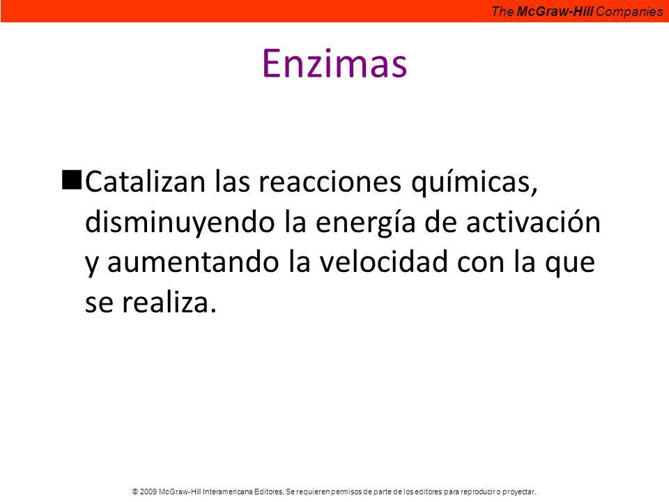 Enzimas Catalizan las reacciones químicas, disminuyendo la energía de activación y aumentando la velocidad con la que se realiza.