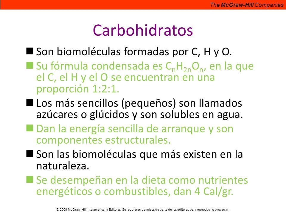 Carbohidratos Son biomoléculas formadas por C, H y O.
