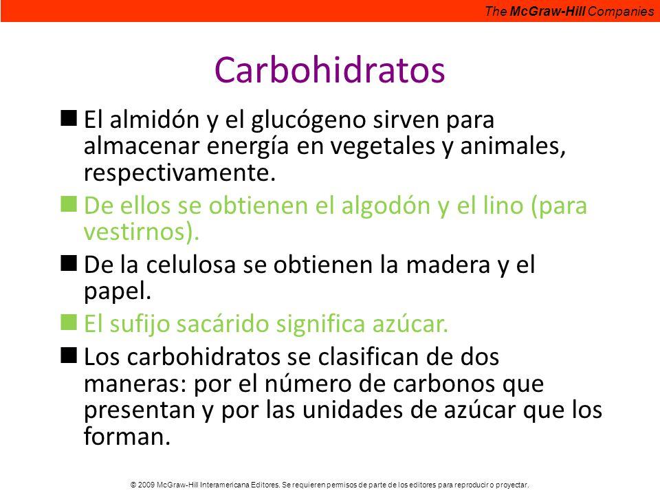 Carbohidratos El almidón y el glucógeno sirven para almacenar energía en vegetales y animales, respectivamente.