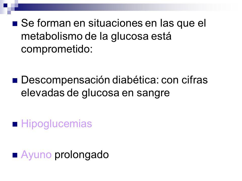 Se forman en situaciones en las que el metabolismo de la glucosa está comprometido: