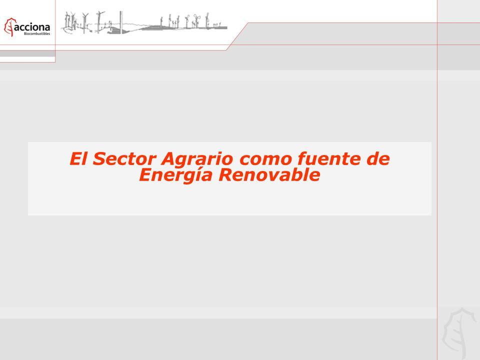 El Sector Agrario como fuente de Energía Renovable