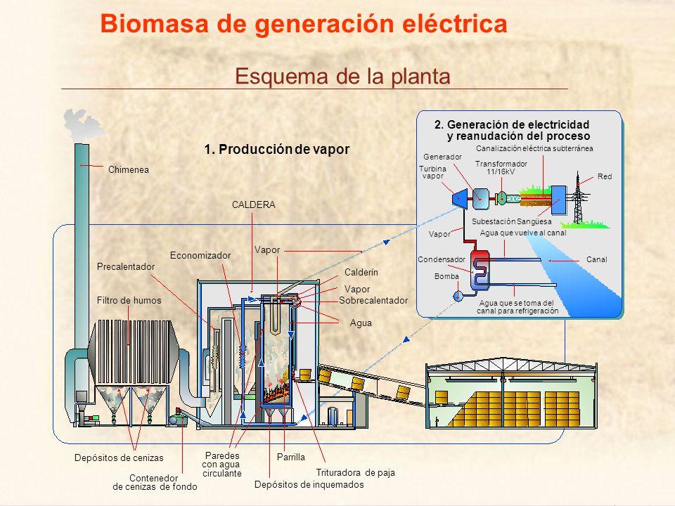 Esquema de la planta Biomasa de generación eléctrica