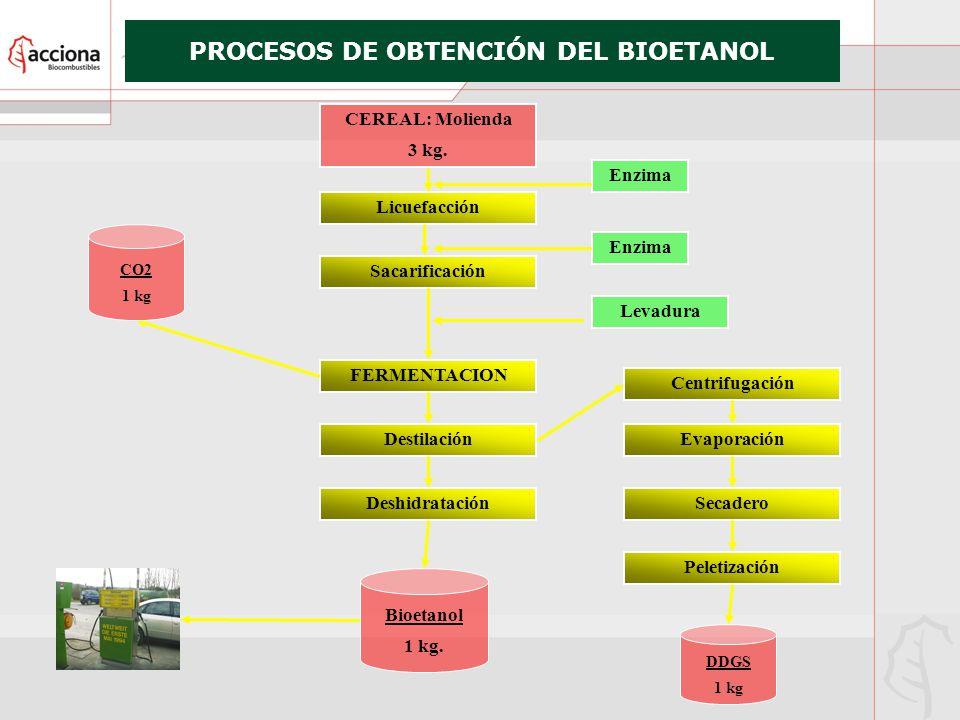 PROCESOS DE OBTENCIÓN DEL BIOETANOL