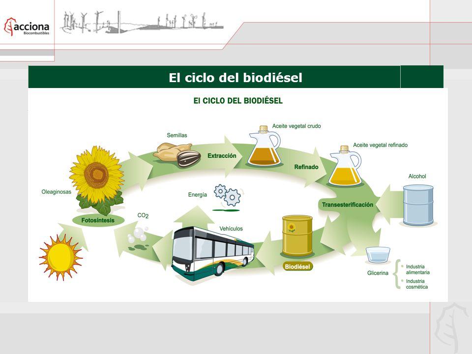 El ciclo del biodiésel