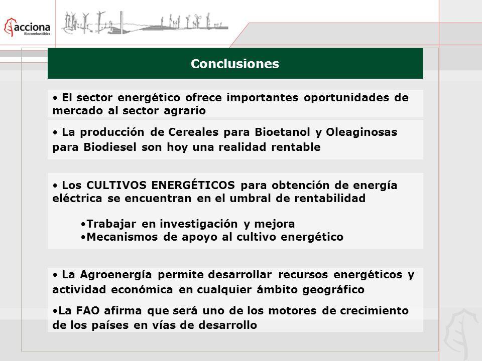 Conclusiones El sector energético ofrece importantes oportunidades de mercado al sector agrario.