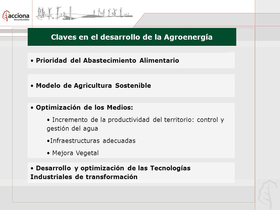 Claves en el desarrollo de la Agroenergía
