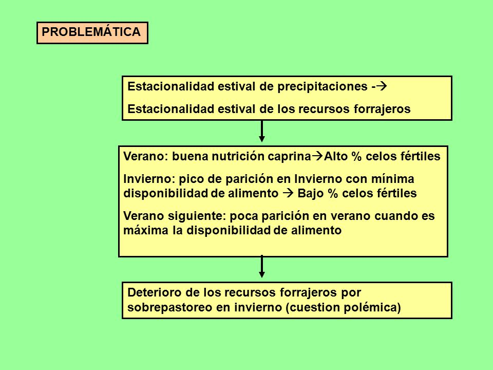 PROBLEMÁTICA Estacionalidad estival de precipitaciones - Estacionalidad estival de los recursos forrajeros.