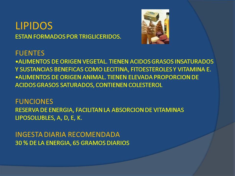LIPIDOS FUENTES FUNCIONES INGESTA DIARIA RECOMENDADA