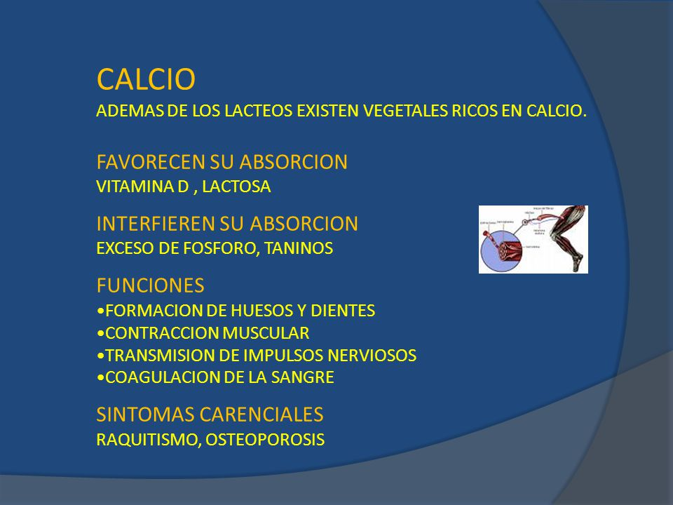 CALCIO FAVORECEN SU ABSORCION INTERFIEREN SU ABSORCION FUNCIONES