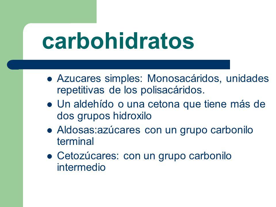 carbohidratos Azucares simples: Monosacáridos, unidades repetitivas de los polisacáridos.