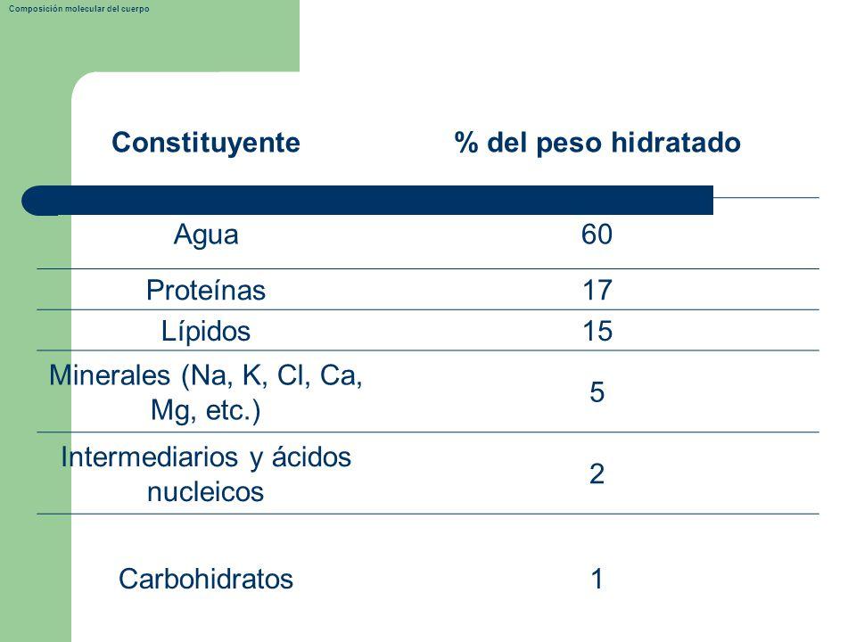 Constituyente % del peso hidratado