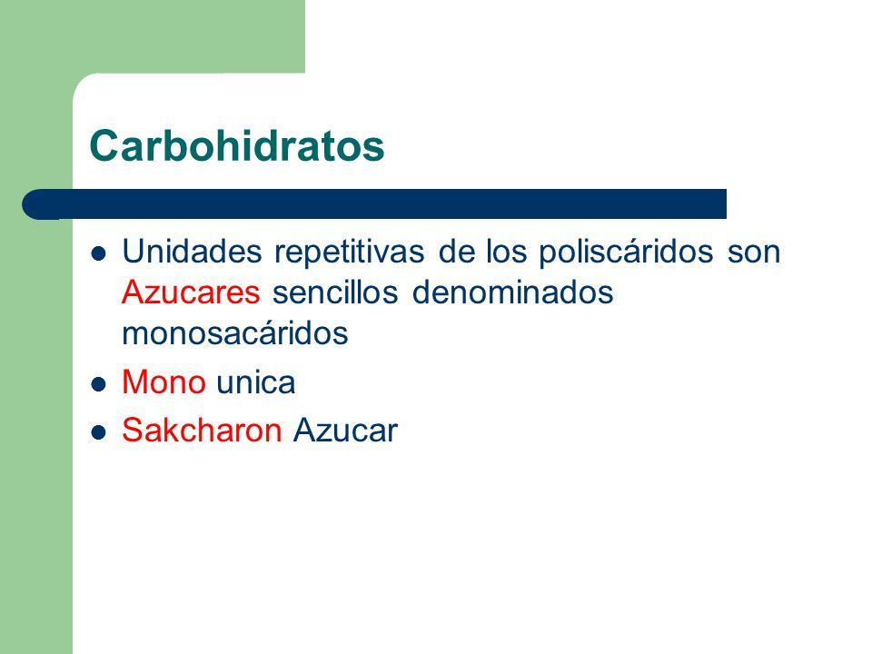 Carbohidratos Unidades repetitivas de los poliscáridos son Azucares sencillos denominados monosacáridos.