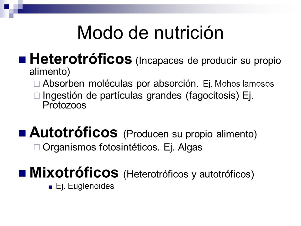 Modo de nutrición Heterotróficos (Incapaces de producir su propio alimento) Absorben moléculas por absorción. Ej. Mohos lamosos.