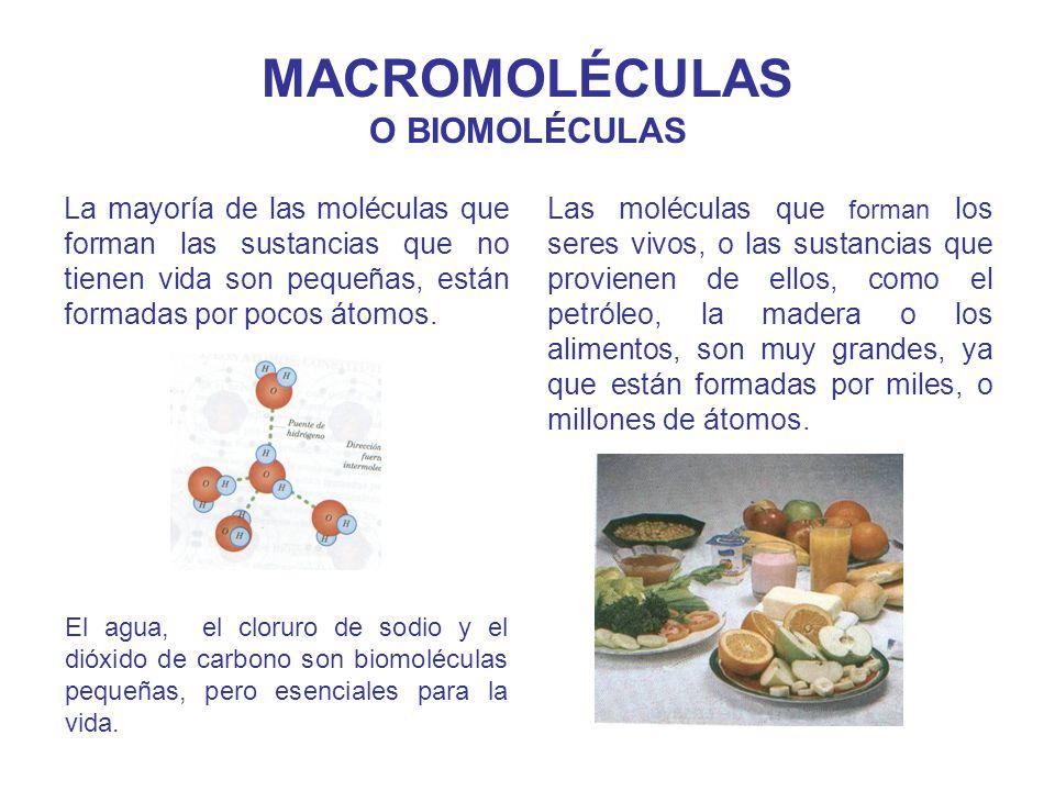 MACROMOLÉCULAS O BIOMOLÉCULAS