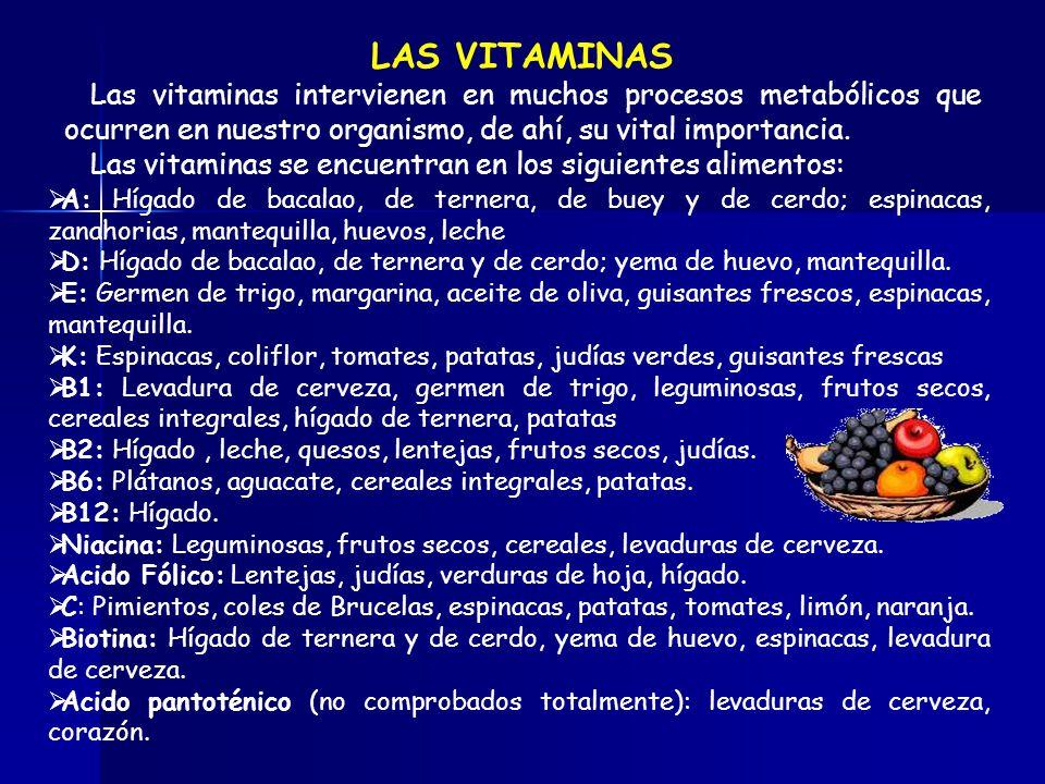 LAS VITAMINAS Las vitaminas intervienen en muchos procesos metabólicos que ocurren en nuestro organismo, de ahí, su vital importancia.