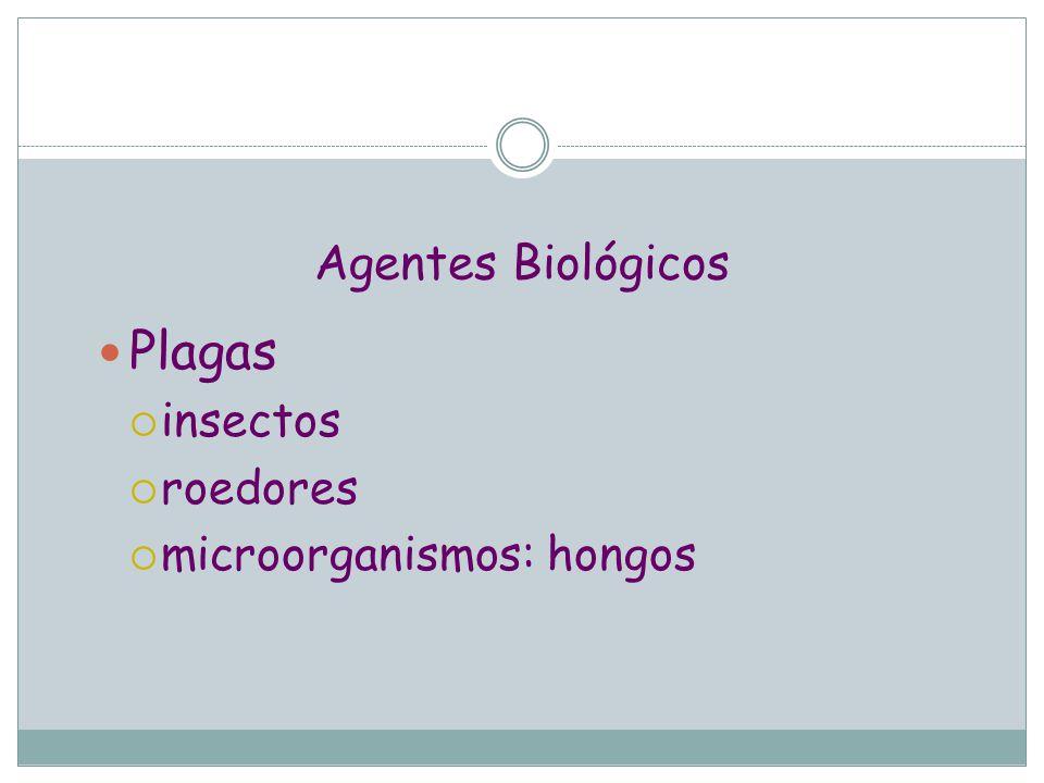 Agentes Biológicos Plagas insectos roedores microorganismos: hongos