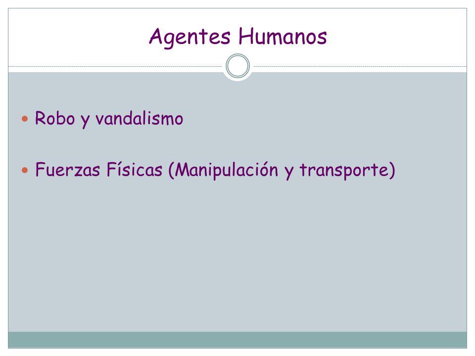 Agentes Humanos Robo y vandalismo