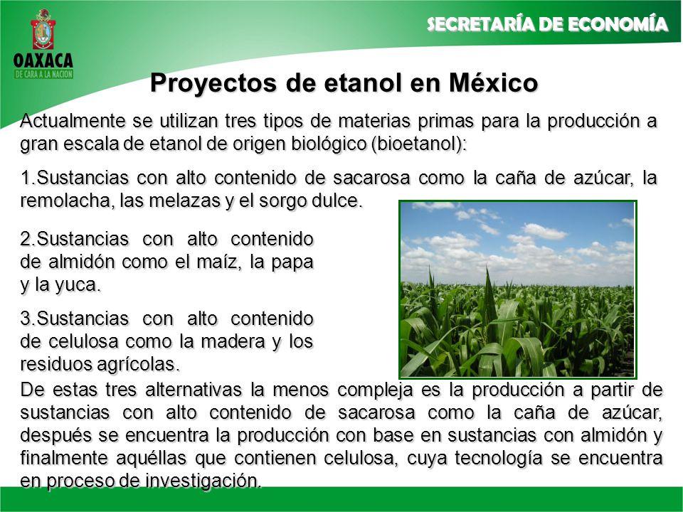 Proyectos de etanol en México