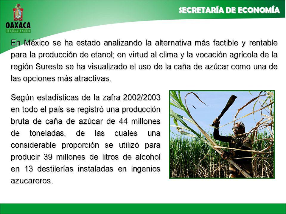 En México se ha estado analizando la alternativa más factible y rentable para la producción de etanol; en virtud al clima y la vocación agrícola de la región Sureste se ha visualizado el uso de la caña de azúcar como una de las opciones más atractivas.