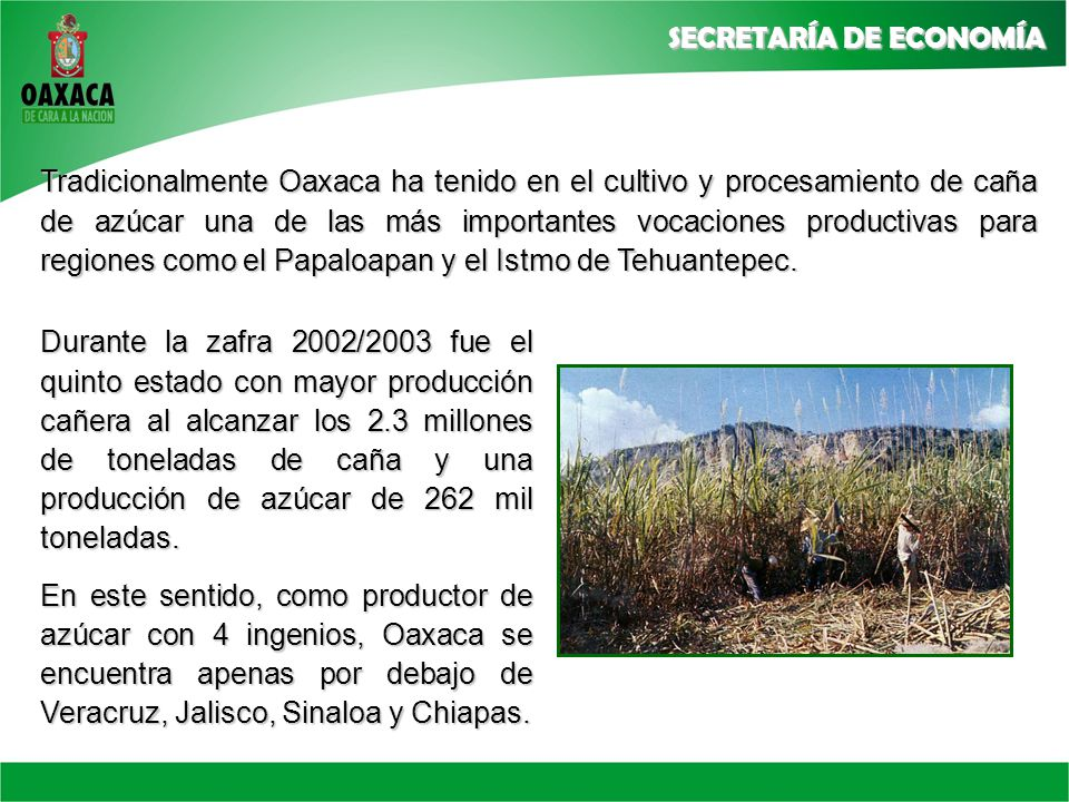 Tradicionalmente Oaxaca ha tenido en el cultivo y procesamiento de caña de azúcar una de las más importantes vocaciones productivas para regiones como el Papaloapan y el Istmo de Tehuantepec.