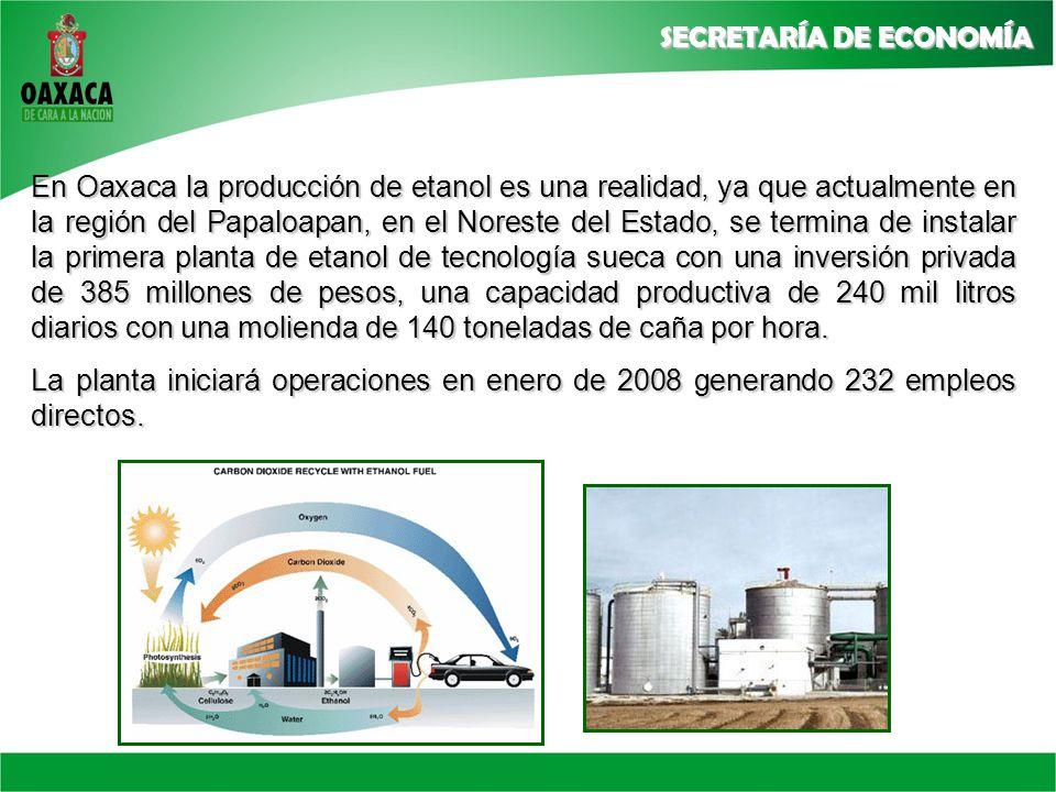 En Oaxaca la producción de etanol es una realidad, ya que actualmente en la región del Papaloapan, en el Noreste del Estado, se termina de instalar la primera planta de etanol de tecnología sueca con una inversión privada de 385 millones de pesos, una capacidad productiva de 240 mil litros diarios con una molienda de 140 toneladas de caña por hora.