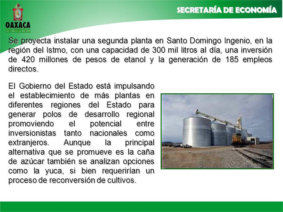 Se proyecta instalar una segunda planta en Santo Domingo Ingenio, en la región del Istmo, con una capacidad de 300 mil litros al día, una inversión de 420 millones de pesos de etanol y la generación de 185 empleos directos.