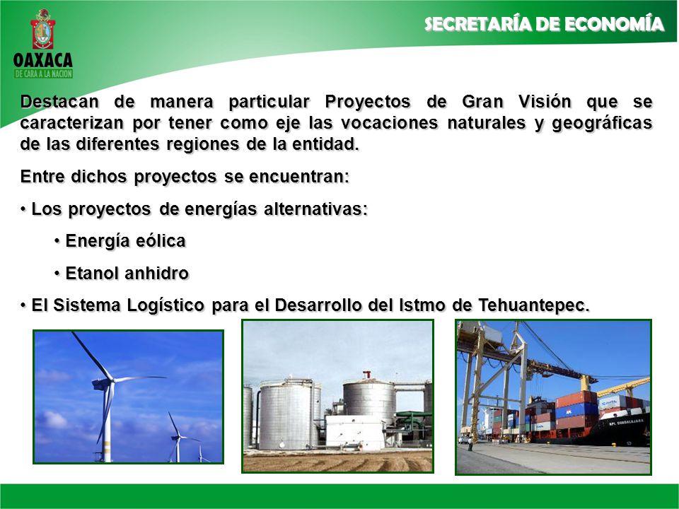 Destacan de manera particular Proyectos de Gran Visión que se caracterizan por tener como eje las vocaciones naturales y geográficas de las diferentes regiones de la entidad.