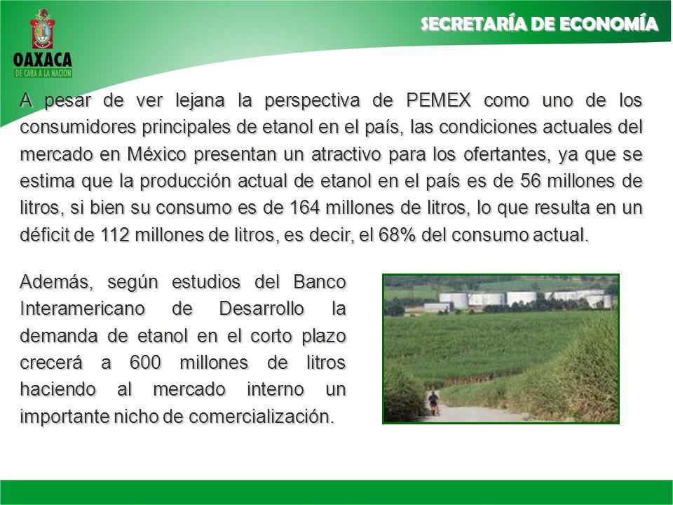 A pesar de ver lejana la perspectiva de PEMEX como uno de los consumidores principales de etanol en el país, las condiciones actuales del mercado en México presentan un atractivo para los ofertantes, ya que se estima que la producción actual de etanol en el país es de 56 millones de litros, si bien su consumo es de 164 millones de litros, lo que resulta en un déficit de 112 millones de litros, es decir, el 68% del consumo actual.