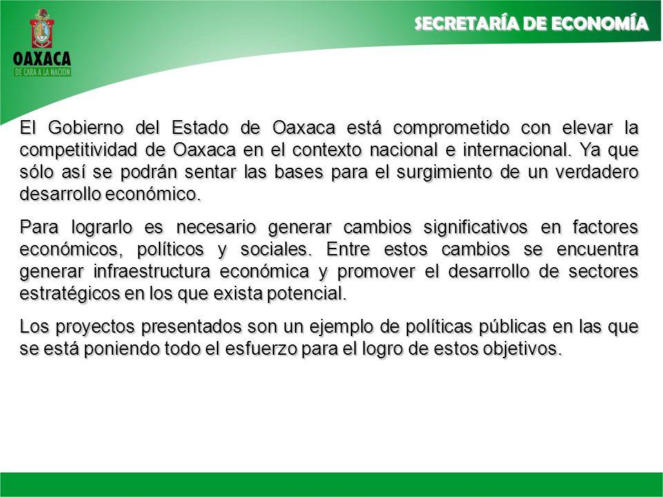El Gobierno del Estado de Oaxaca está comprometido con elevar la competitividad de Oaxaca en el contexto nacional e internacional. Ya que sólo así se podrán sentar las bases para el surgimiento de un verdadero desarrollo económico.
