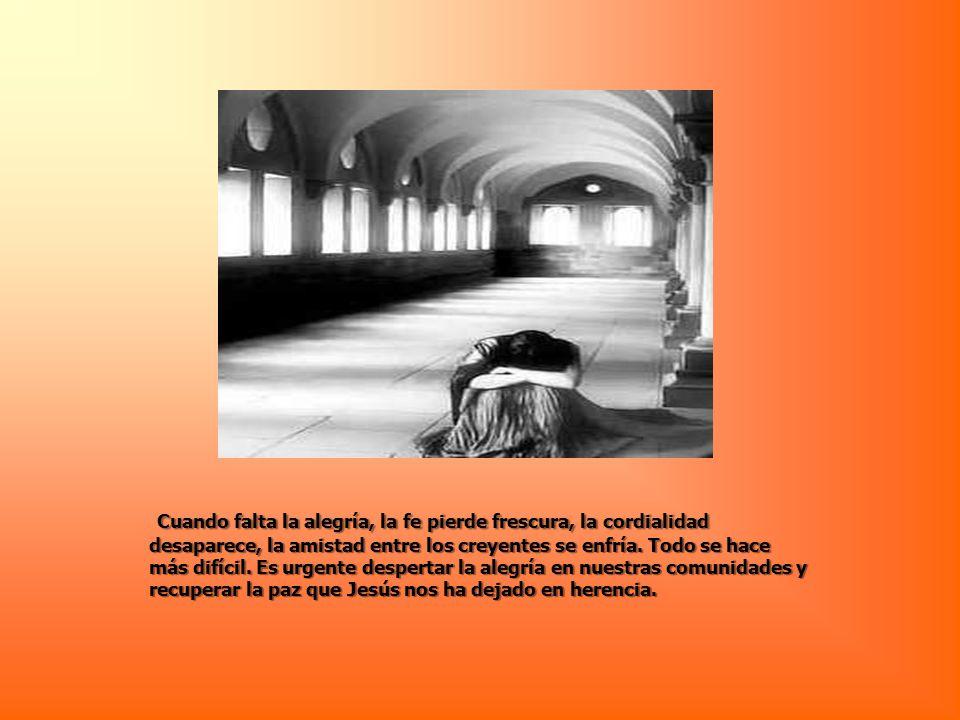 Cuando falta la alegría, la fe pierde frescura, la cordialidad desaparece, la amistad entre los creyentes se enfría.