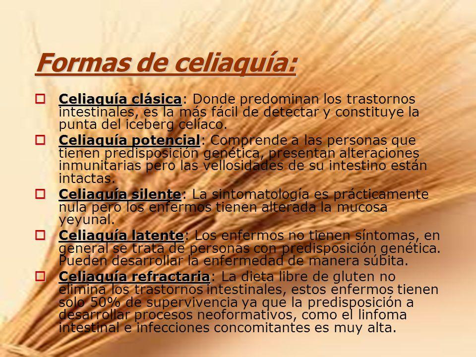 Formas de celiaquía: