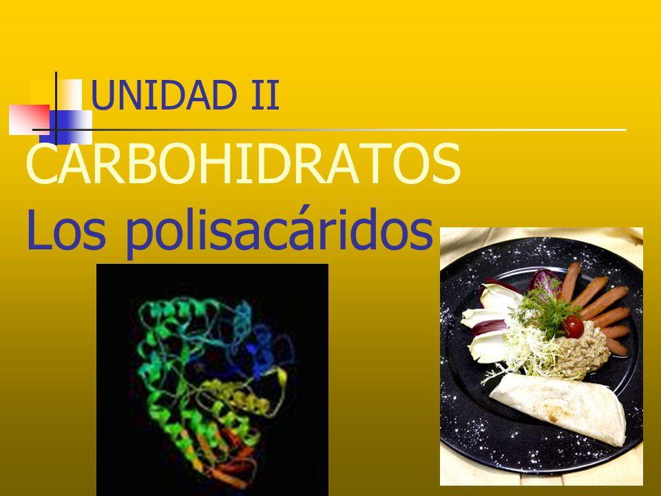 UNIDAD II CARBOHIDRATOS Los polisacáridos