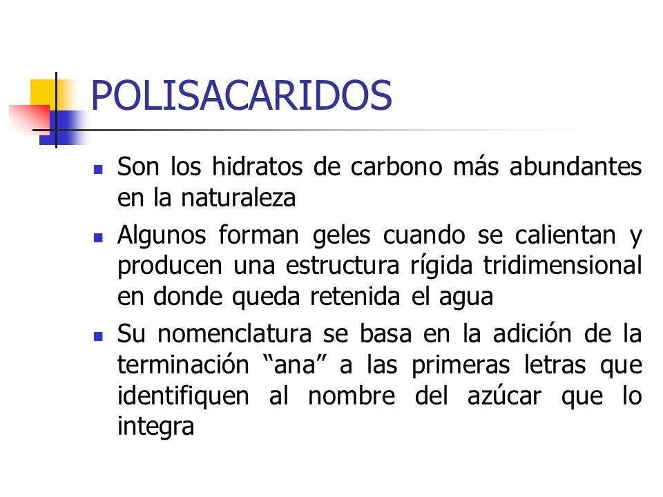 POLISACARIDOS Son los hidratos de carbono más abundantes en la naturaleza.