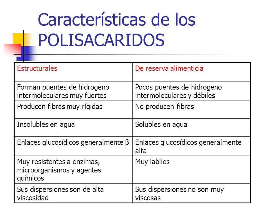 Características de los POLISACARIDOS