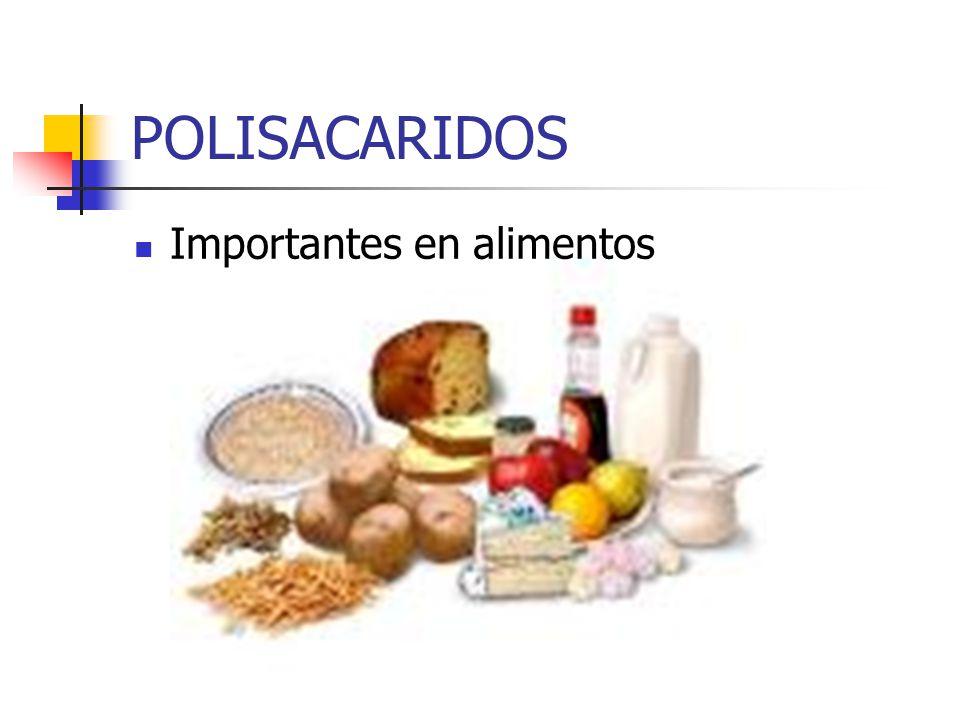 POLISACARIDOS Importantes en alimentos